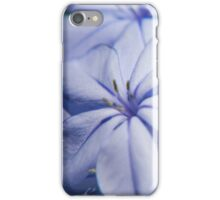 Beautiful garden flowers iPhone Case/Skin
