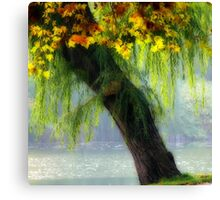 autumn tree special Canvas Print