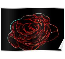 Glowing Rose  Poster
