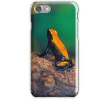 Frog 2 iPhone Case/Skin
