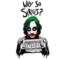 Why so Sirius? Photographic Print