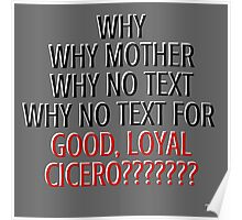 WHY NO TEXT Poster