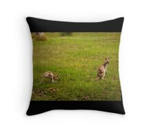 Wallabies Throw Pillow