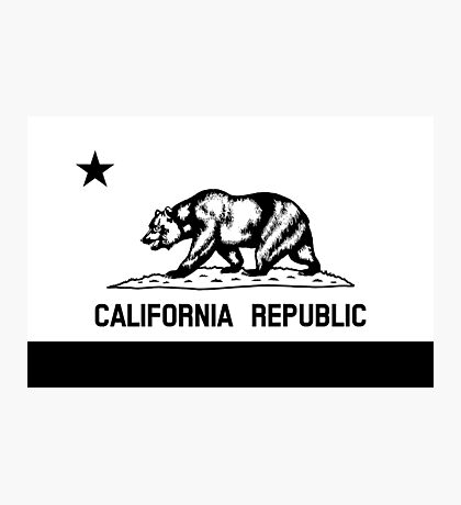 The Bear Flag - Black and White  Photographic Print
