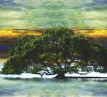 The floating tree by Clare Colins