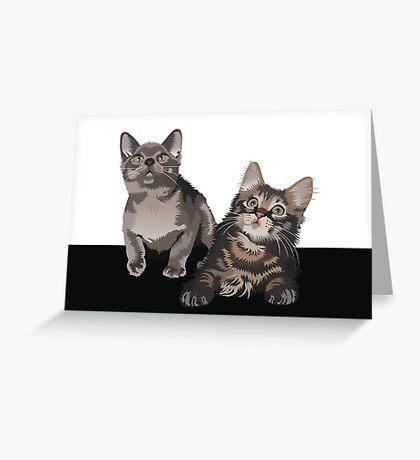 Kittens Greeting Card