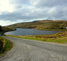 The Back Roads Of Donegal by Fara