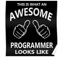 This is What an Awesome Programmer Looks Like - Programming Poster