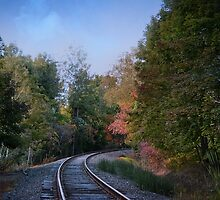 Autumn Tracks by Lenawilhite