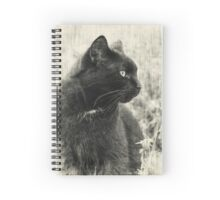 Levi: Portrait of a Beautiful Black Boy Spiral Notebook