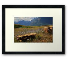 Mountains, Fields of Flowers and Rock Pieces Framed Print