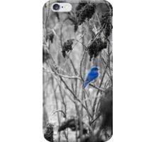 repose iPhone Case/Skin