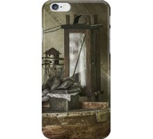 Miscellany II iPhone Case/Skin