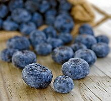 Blueberry Macro by Maria Dryfhout