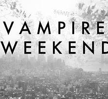 Vampire Weekend Poster by cmiles