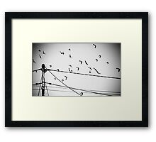 Birds not on a wire Framed Print