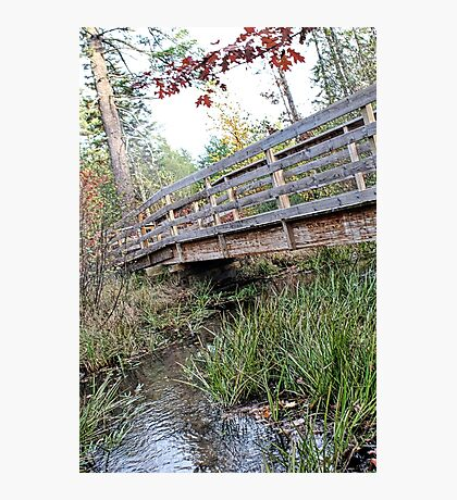 Take a Hike Photographic Print