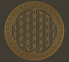 Flower of Life by Echolite