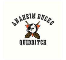Anaheim Ducks Quidditch Art Print