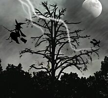 Bewitching Night  by Lisa Taylor