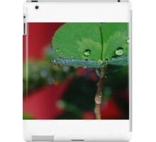Raindrop Macro iPad Case/Skin