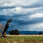 Storm Building 2 by Candice84