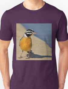 Golden Bunting - African Colorful Wild Birds Unisex T-Shirt