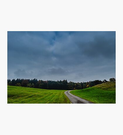 Road to woodland Photographic Print