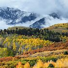 Mountains in the clouds by Linda Sparks