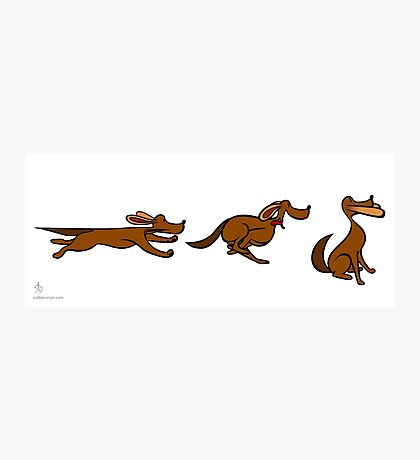 Dog Run sequential art Photographic Print