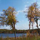 Autumn in Northeast Ohio by Monnie Ryan