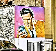 """We Have an Elvis Sighting""... prints and products by © Bob Hall"