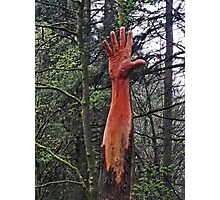 The Giant Hand of Vyrnwy Photographic Print