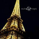 Wonderful Eiffel Tower by Julie Sleeman