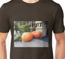 Two Large Pumpkins Unisex T-Shirt