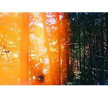 Light & Dark Photographic Print