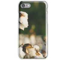 Cotton Field 10 iPhone Case/Skin