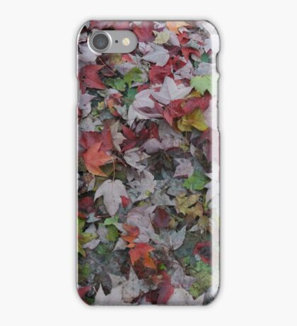 Walk through Colorful leaves iPhone Case/Skin