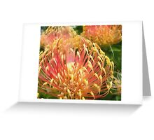 Protea in water colour Greeting Card