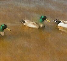 Ducks in Water by PeterWhy