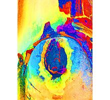 Summer Eucalypt Abstract 10 Photographic Print