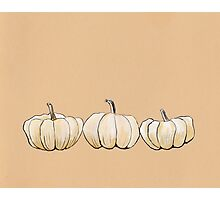 Thanksgiving poster - White pumpkins Photographic Print