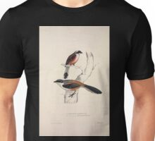 John Gould A Century of Birds from the Himalaya Mountains 1831 012 Collurio Hardwickii and Erythronotus Unisex T-Shirt