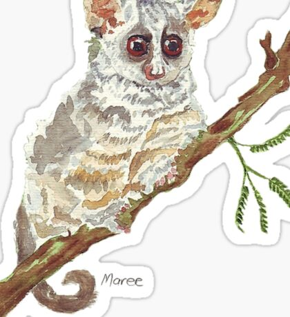 Pippin, the Bush baby Sticker