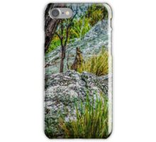 Bush Baby iPhone Case/Skin