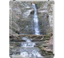 Creek Canyon Waterfall iPad Case/Skin