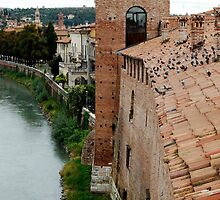 Verona_ Roof by dyanera