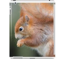 Red Squirrel iPad Case/Skin