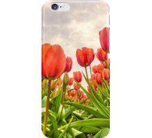 Dutch Tulips iPhone Case/Skin
