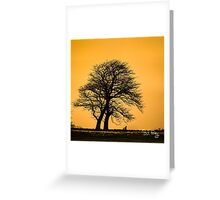 WINTER-TREES-0347 Greeting Card